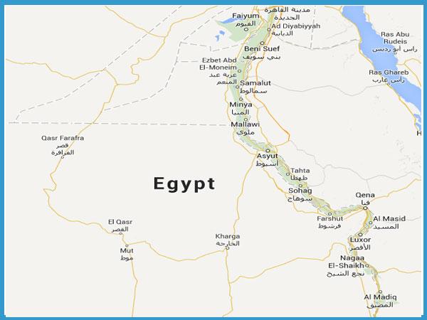 Cap Sealing machine exporter Egypt